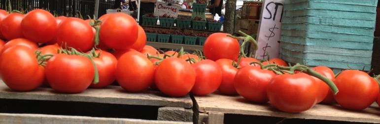 tomatoes-8-19-13