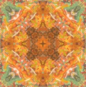 fall-leaves-mandala-lildeep-2