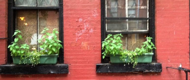 windowbox-6-12-15